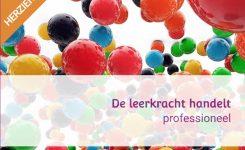 Vernieuwd! 'De leerkracht handelt professioneel'